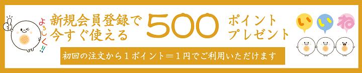 新規会員500ポイント版